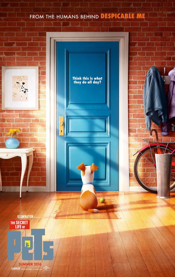 #Trailer Mascotas